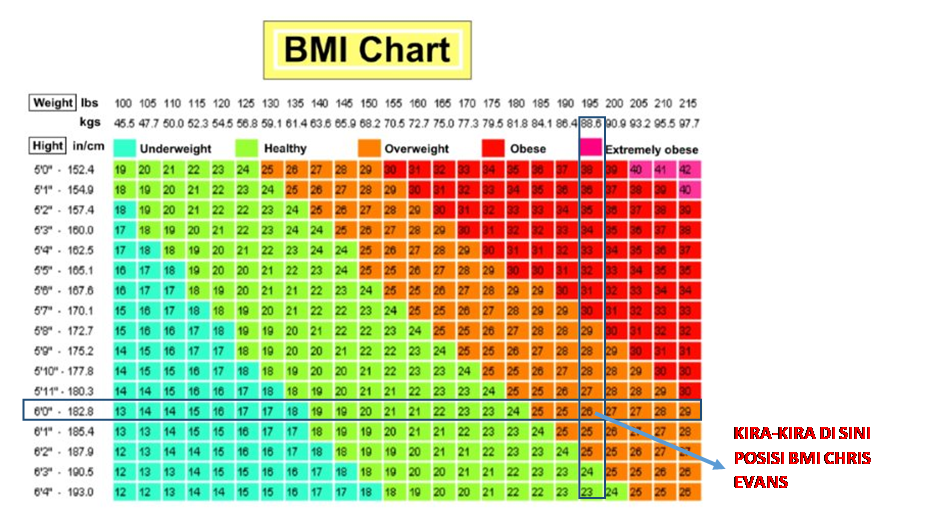 bmi chart chris evans